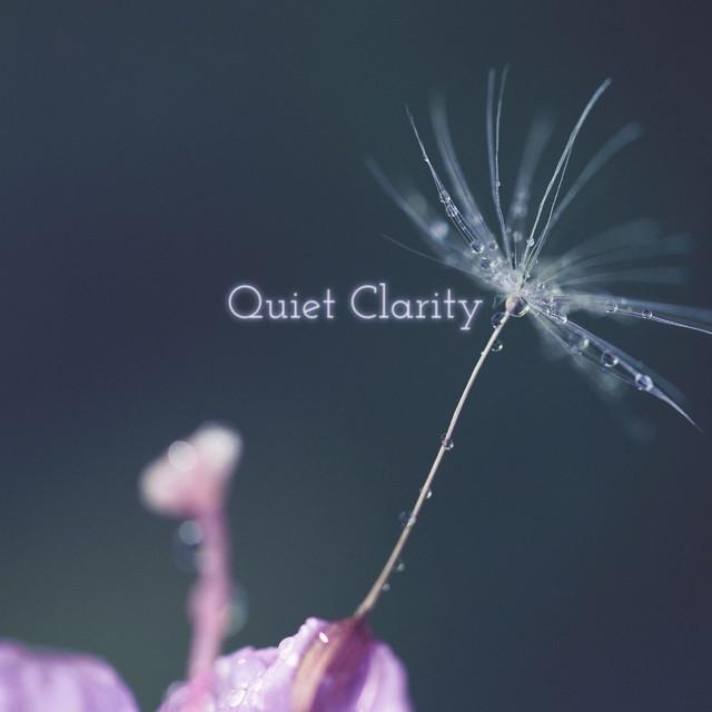 Quiet Clarity