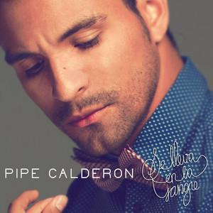 Pipe Calderón