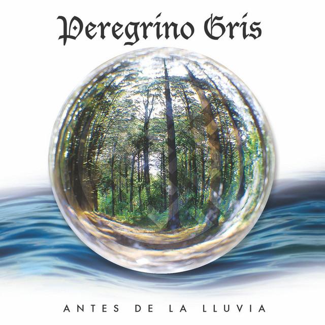 Peregrino Gris