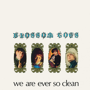We Are Ever So Clean album