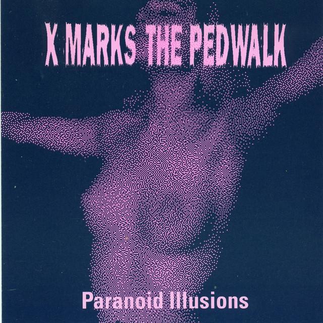 Paranoid Illusions