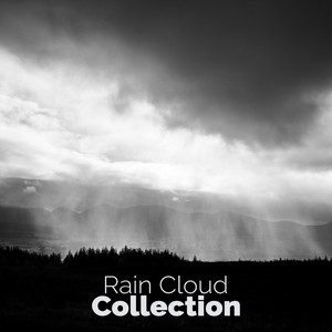 Rain Cloud Collection Albumcover