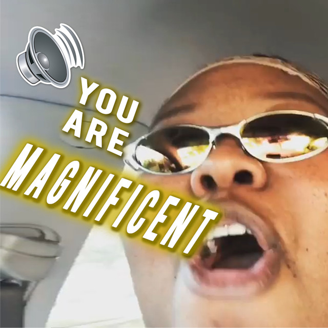 You Are Magnificent