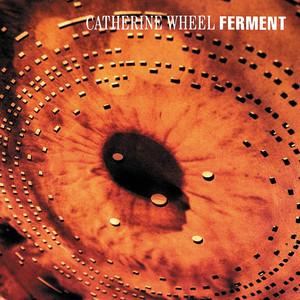 Ferment album