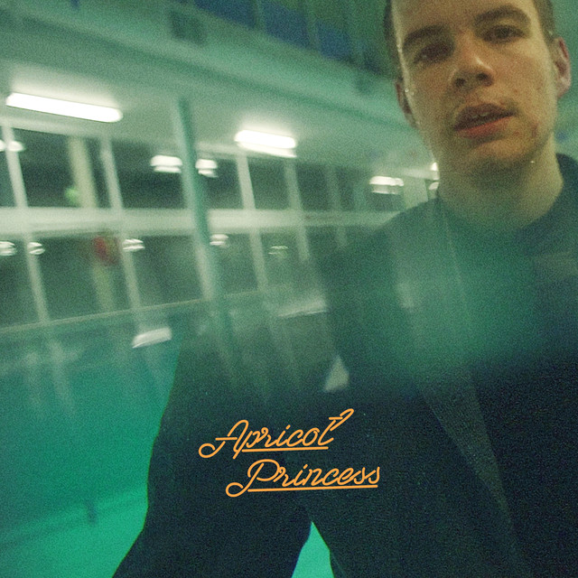 Album cover for Apricot Princess by Rex Orange County
