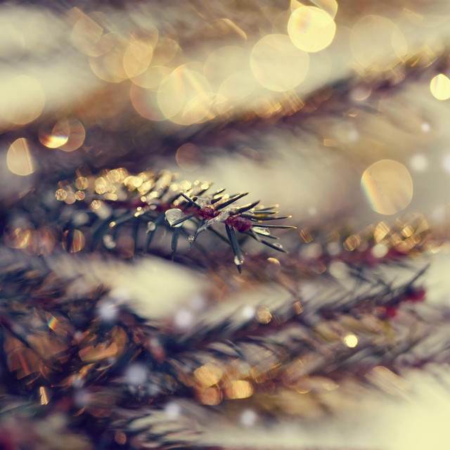Jingle Bells (K-391 Remix)
