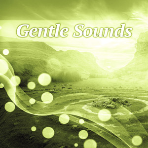 Gentle Sounds – Nature Sounds for Relaxation, New Age Piano Music, Soothing Waves, Chillout Albümü