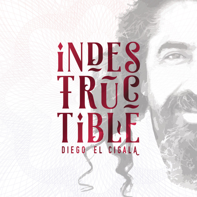 Album cover for Indestructible by Diego El Cigala