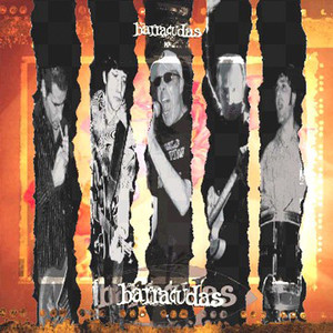 The Barracudas album