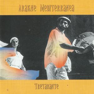 Picture of Arakne Mediterranea