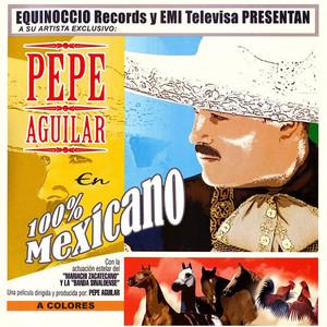 Pepe Aguilar Perdono y olvido cover