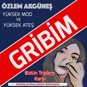 Gribim (Mikrofon Feza) Albümü