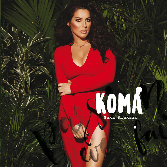 Album cover for Koma by Seka Aleksic