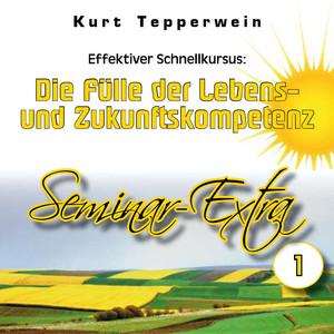 Effektiver Schnellkursus: Die Fülle der Lebens- und Zukunftskompetenz (Seminar-Extra Teil 1) Hörbuch kostenlos