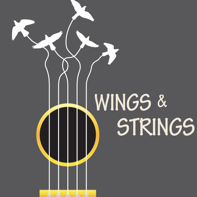Wings & Strings Albumcover