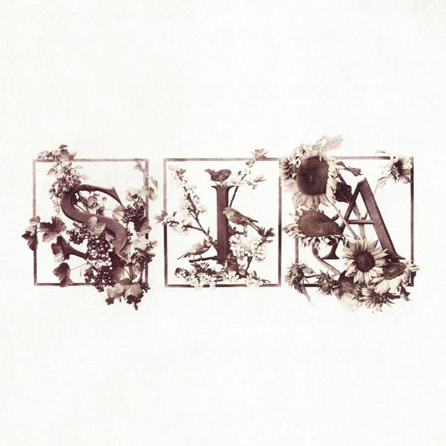 Sia Colour The Small One (Deluxe Edition) album cover