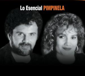 Pimpinela Que Ganas de No Verte Nunca Más cover