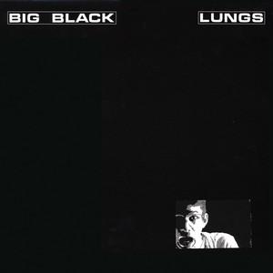 Lungs album