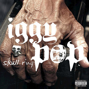 Iggy Pop, Sum 41 Little Know It All cover