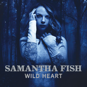 Wild Heart album