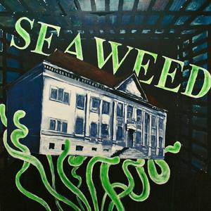 Seaweed album