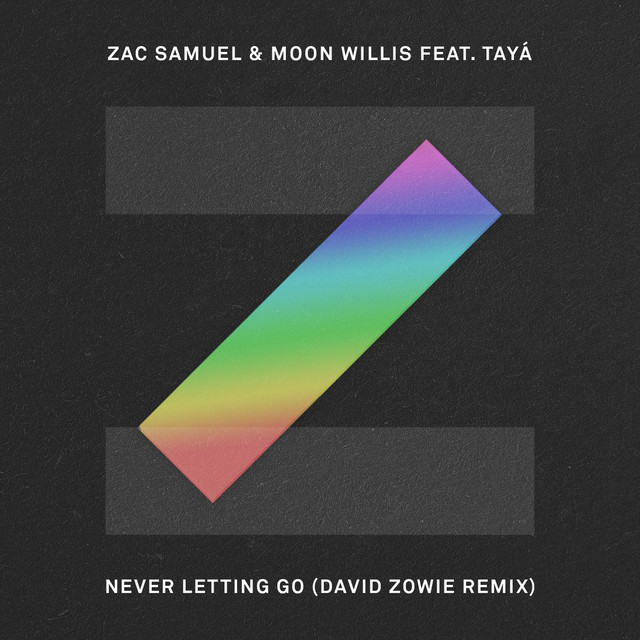 Never Letting Go (David Zowie Remix)
