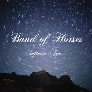 Infinite Arms album