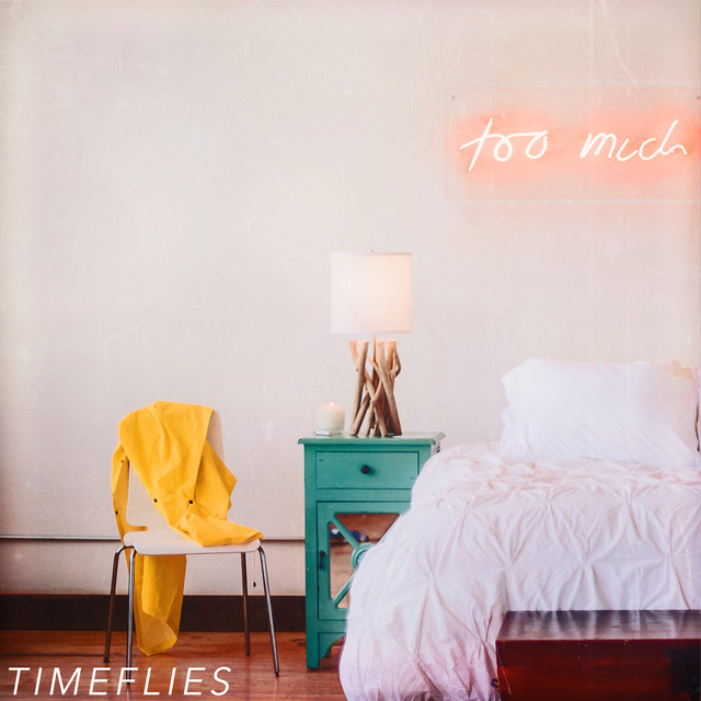Album cover for Too Much by Timeflies