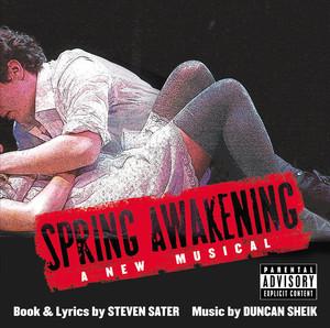 Spring Awakening Albümü