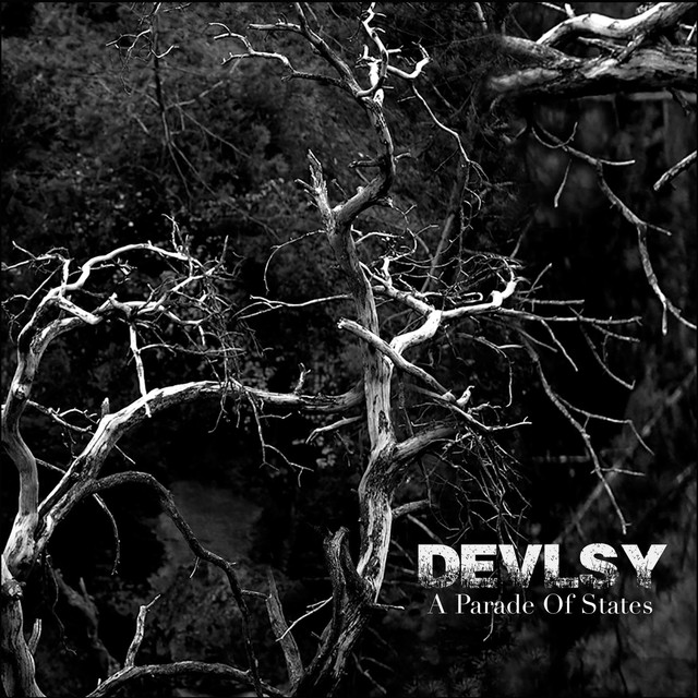 Devlsy