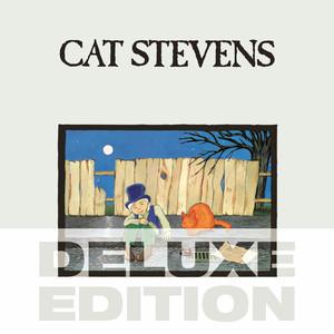 Yusuf / Cat Stevens