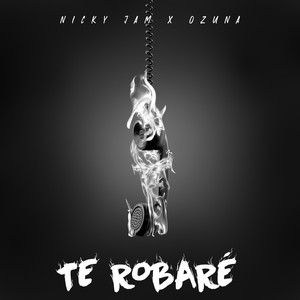 Te Robaré Albümü