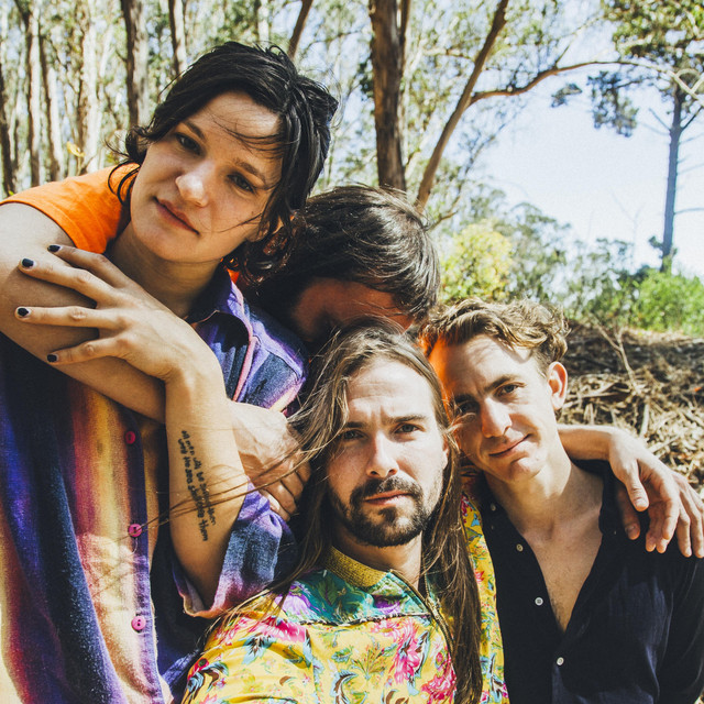 Big Thief tickets and 2021 tour dates