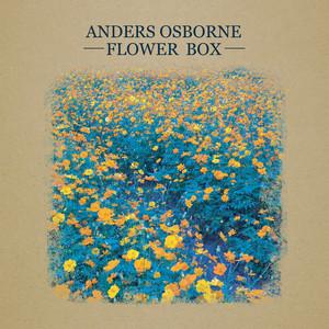 Flower Box album
