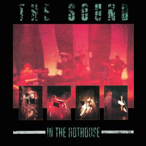 In the Hothouse (Live)