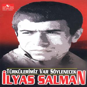 Türkülerimiz Var Söylenecek Albümü