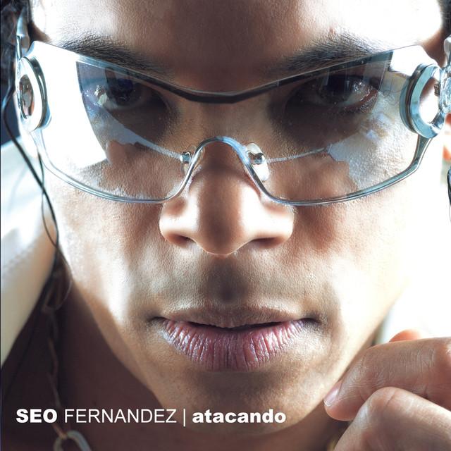 Seo Fernandez