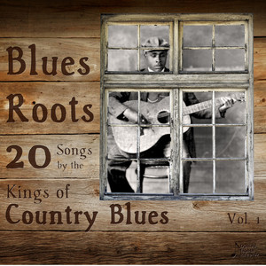 Blues Roots: 20 Songs by the Kings of Country Blues album
