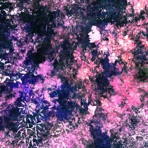 Christina lucci purple bounce tmb