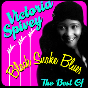 Black Snake Blues - The Best Of album