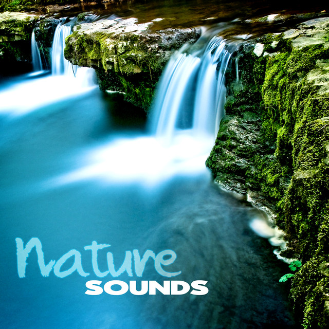 Nature Sounds – Water Sounds for Relaxation, Singing Birds for Spa, Ocean Sounds for Yoga & Meditation, Rain Sounds for Reiki, Wellness, Massage, Asian Zen Albumcover