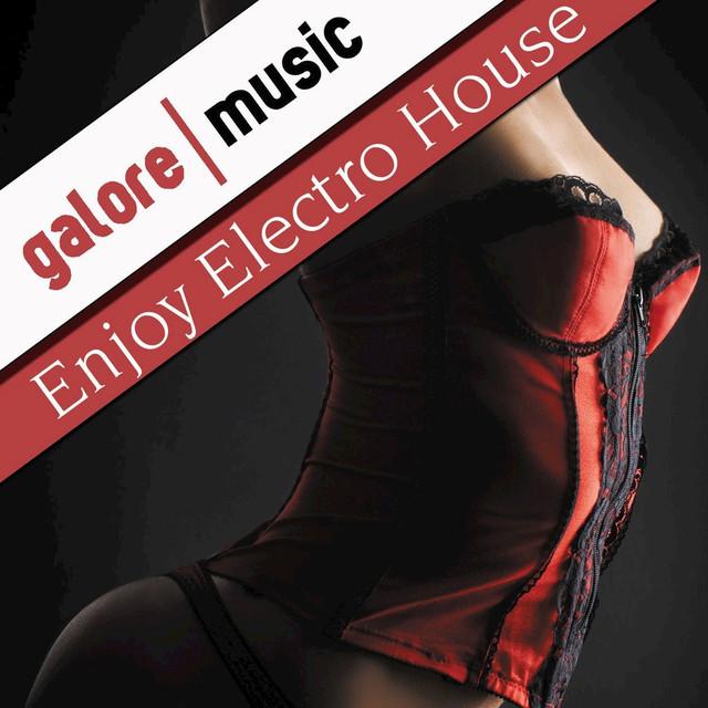 Enjoy Electro House Albumcover