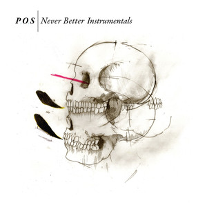 Never Better [Instrumental Version] album