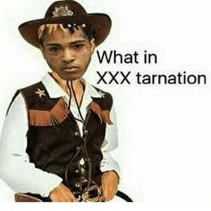What in XXXTarnation Albümü
