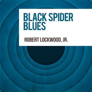 Black Spider Blues album
