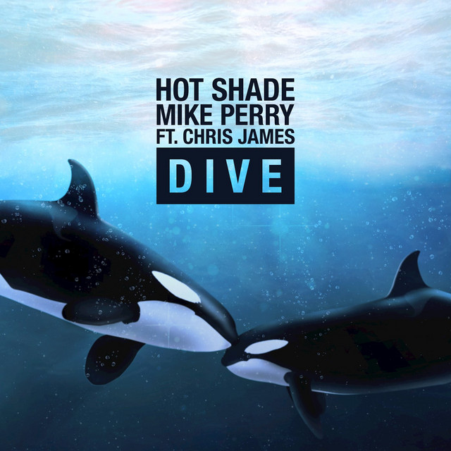 Image result for spotify hot shade dive