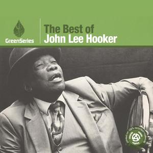 The Best Of John Lee Hooker - Green Series album