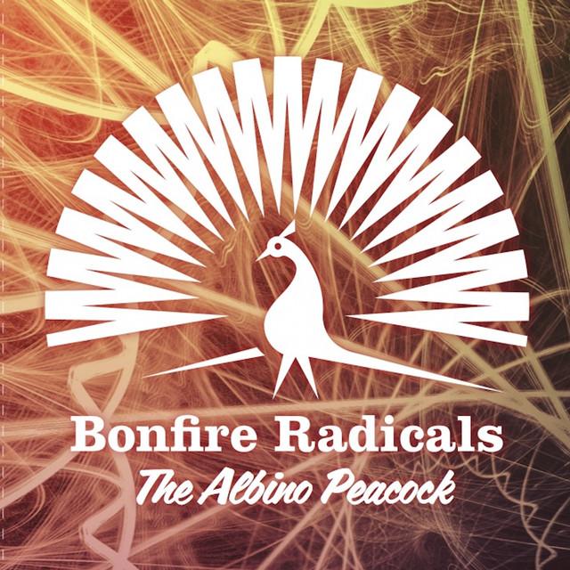 Bonfire Radicals