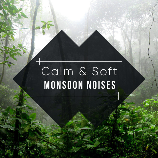 Forest Thunderstorm, a song by Rain Sounds, Relaxing Music