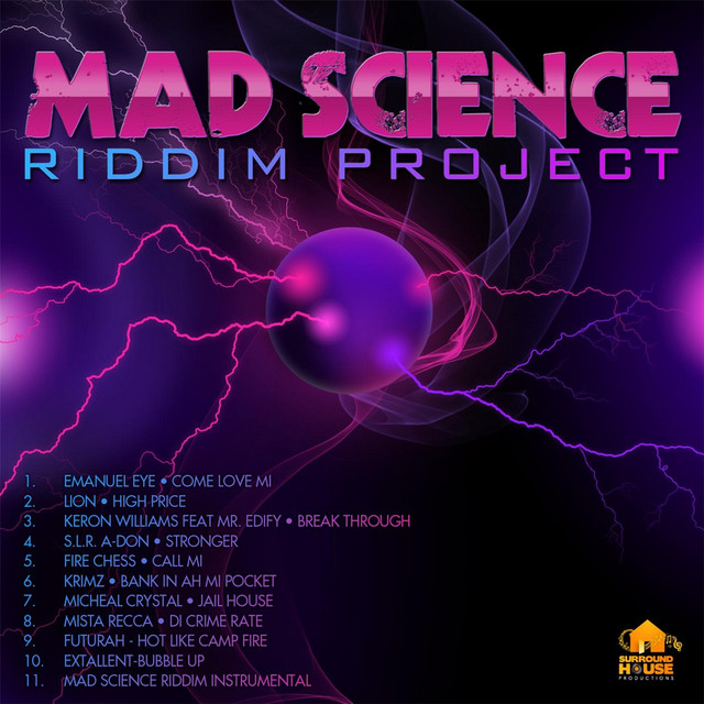 Mad Science Riddim Instrumental, a song by Surround House